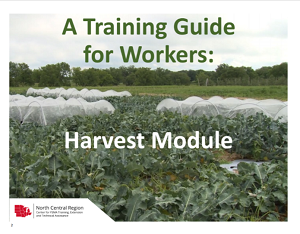 first page of the training guide for workers