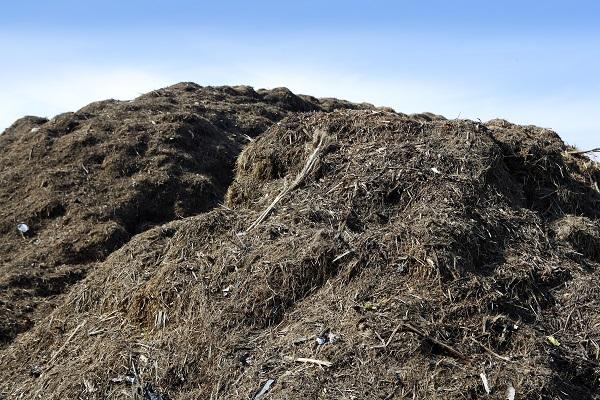 large compost pile against a blue sky