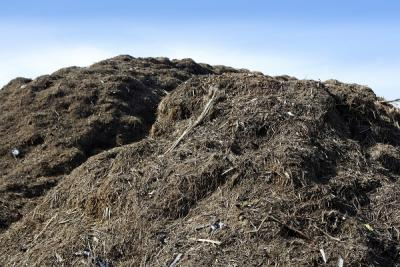 large compost pile against a blue sky