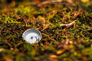 thermometer inside a pile of compost
