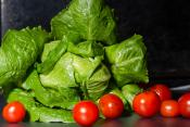 lettuce and tomatoes against a black background