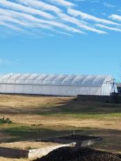 Shepard's greenhouse under a cloudy sky