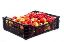 apples in a plastic crate